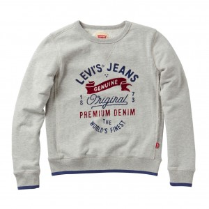 Grey/Mastic Melvin Sweater, Levi´s Boys