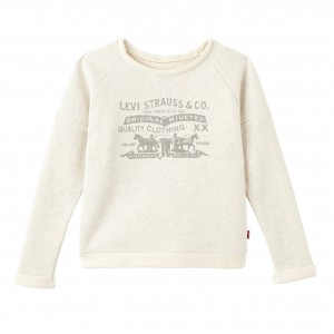 Grey/Gris Chin Ode Sweater, Levi´s Kidswear